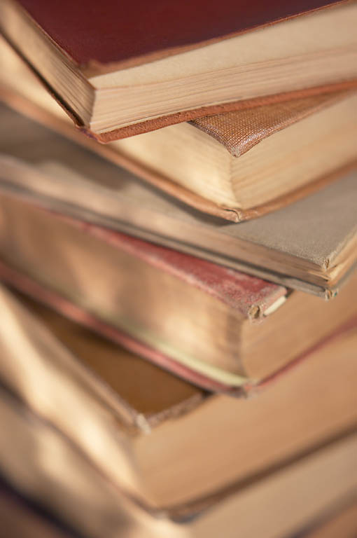 Penerjemah Masa Kini: Profesi SaratTantangan